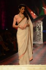 Model walk the ramp for IIJW 2015 Day 3 on 5th Aug 2015 (157)_55c320bc6df18.JPG