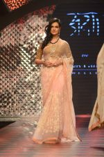 Model walk the ramp for IIJW 2015 Day 3 on 5th Aug 2015 (158)_55c320bd89962.JPG
