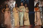 Model walk the ramp for IIJW 2015 Day 3 on 5th Aug 2015 (165)_55c320c8b6d56.JPG