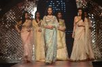 Model walk the ramp for IIJW 2015 Day 3 on 5th Aug 2015 (166)_55c320ca57f31.JPG