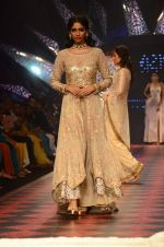 Model walk the ramp for IIJW 2015 Day 3 on 5th Aug 2015 (171)_55c320d369588.JPG