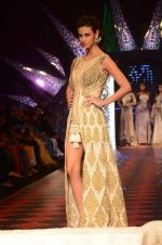 Model walk the ramp for IIJW 2015 Day 3 on 5th Aug 2015 (172)_55c320d5314dc.JPG