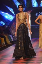 Model walk the ramp for IIJW 2015 Day 3 on 5th Aug 2015 (181)_55c320d93d51e.JPG
