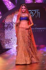 Model walk the ramp for IIJW 2015 Day 3 on 5th Aug 2015 (183)_55c320dd1be99.JPG