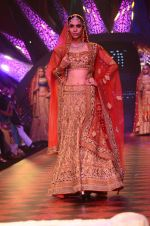 Model walk the ramp for IIJW 2015 Day 3 on 5th Aug 2015 (185)_55c320dfb9b95.JPG