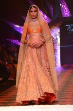 Model walk the ramp for IIJW 2015 Day 3 on 5th Aug 2015 (186)_55c320e126472.JPG