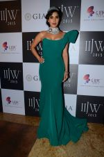Sophie Chaudhary on Day 3 of IIJW 2015 on 5th Aug 2015