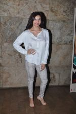Daisy Shah at Bangistan Screening in Lightbox on 6th Aug 2015 (8)_55c46b1b9ca02.JPG