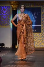 Model walk the ramp for Shyamal bhumika Grand Finale Show at IIJW 2015 on 6th Aug 2015 (10)_55c4632fc6939.JPG