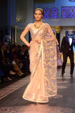 Model walk the ramp for Shyamal bhumika Grand Finale Show at IIJW 2015 on 6th Aug 2015 (11)_55c46330974e5.JPG