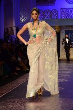 Model walk the ramp for Shyamal bhumika Grand Finale Show at IIJW 2015 on 6th Aug 2015 (15)_55c4633444a7f.JPG