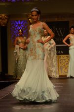 Model walk the ramp for Shyamal bhumika Grand Finale Show at IIJW 2015 on 6th Aug 2015 (16)_55c463356a265.JPG