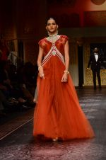 Model walk the ramp for Shyamal bhumika Grand Finale Show at IIJW 2015 on 6th Aug 2015 (19)_55c463389df66.JPG