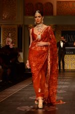 Model walk the ramp for Shyamal bhumika Grand Finale Show at IIJW 2015 on 6th Aug 2015 (21)_55c4633ac03b2.JPG