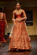 Model walk the ramp for Shyamal bhumika Grand Finale Show at IIJW 2015 on 6th Aug 2015 (22)_55c4633bb0101.JPG