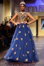 Model walk the ramp for Shyamal bhumika Grand Finale Show at IIJW 2015 on 6th Aug 2015 (5)_55c4632b97736.JPG