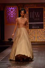 Model walk the ramp for Shyamal bhumika Grand Finale Show at IIJW 2015 on 6th Aug 2015 (67)_55c4633df40df.JPG
