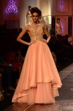 Model walk the ramp for Shyamal bhumika Grand Finale Show at IIJW 2015 on 6th Aug 2015 (71)_55c46341addfb.JPG