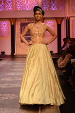 Model walk the ramp for Shyamal bhumika Grand Finale Show at IIJW 2015 on 6th Aug 2015 (72)_55c4634267aae.JPG