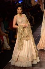 Model walk the ramp for Shyamal bhumika Grand Finale Show at IIJW 2015 on 6th Aug 2015 (78)_55c46347dd994.JPG