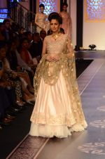 Model walk the ramp for Shyamal bhumika Grand Finale Show at IIJW 2015 on 6th Aug 2015 (79)_55c463489cd70.JPG