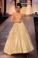 Model walk the ramp for Shyamal bhumika Grand Finale Show at IIJW 2015 on 6th Aug 2015