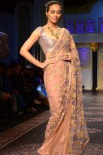 Model walk the ramp for Shyamal bhumika Grand Finale Show at IIJW 2015 on 6th Aug 2015 (12)_55c463316b87e.JPG