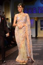 Model walk the ramp for Shyamal bhumika Grand Finale Show at IIJW 2015 on 6th Aug 2015 (13)_55c46332750c8.JPG