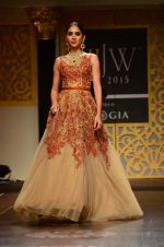 Model walk the ramp for Shyamal bhumika Grand Finale Show at IIJW 2015 on 6th Aug 2015 (17)_55c463366fc47.JPG