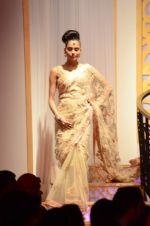 Model walk the ramp for Shyamal bhumika Grand Finale Show at IIJW 2015 on 6th Aug 2015 (66)_55c4633d4dc73.JPG