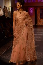 Model walk the ramp for Shyamal bhumika Grand Finale Show at IIJW 2015 on 6th Aug 2015 (73)_55c463434d027.JPG