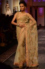 Model walk the ramp for Shyamal bhumika Grand Finale Show at IIJW 2015 on 6th Aug 2015 (76)_55c46345af13f.JPG