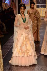 Model walk the ramp for Shyamal bhumika Grand Finale Show at IIJW 2015 on 6th Aug 2015 (77)_55c463468a227.JPG