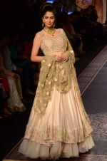 Model walk the ramp for Shyamal bhumika Grand Finale Show at IIJW 2015 on 6th Aug 2015 (80)_55c4634969144.JPG