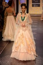 Model walk the ramp for Shyamal bhumika Grand Finale Show at IIJW 2015 on 6th Aug 2015 (81)_55c4634a41553.JPG