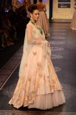 Model walk the ramp for Shyamal bhumika Grand Finale Show at IIJW 2015 on 6th Aug 2015 (82)_55c4634b4a45a.JPG