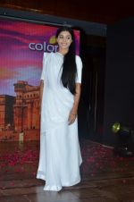 Vidya Sinha at Colors launches its new show Ishq Ka Rang Safed in Novotel on 7th Aug 2015 (35)_55c5d3f9dad75.JPG