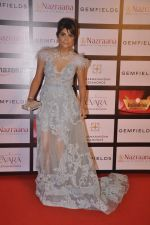 Michelle Poonawala at Retail jewellers awards in Grand Hyatt, Mumbai on 9th Aug 2015 (34)_55c85b8403eb1.JPG
