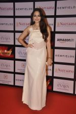 Zoya Afroz at Retail jewellers awards in Grand Hyatt, Mumbai on 9th Aug 2015 (79)_55c85c2c85703.JPG