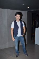Meiyang Chang at Ravi Dubey_s film screening in Fun Cinemas on 12th Aug 2015 (10)_55cc490a77203.JPG