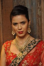 Sucheta Sharma at Shyamal Bhumika_s new wedding line launch in Kemp_s Corner on 13th Aug 2015 (33)_55cda87e679b7.JPG