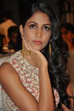 Lavanya Tripathi at Bhale Bhale Magadivoy Movie Audio (24)_55d07c829b12d.jpg