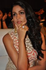 Lavanya Tripathi at Bhale Bhale Magadivoy Movie Audio (33)_55d07c8a9ea7e.jpg
