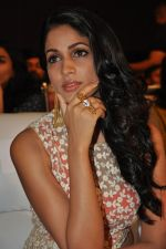 Lavanya Tripathi at Bhale Bhale Magadivoy Movie Audio (34)_55d07c8b6a24e.jpg