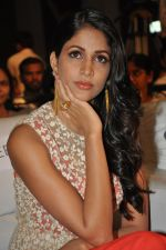 Lavanya Tripathi at Bhale Bhale Magadivoy Movie Audio (35)_55d07c8c3f77a.jpg