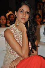Lavanya Tripathi at Bhale Bhale Magadivoy Movie Audio (38)_55d07c8ed4dec.jpg