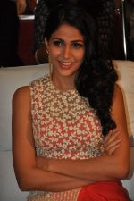 Lavanya Tripathi at Bhale Bhale Magadivoy Movie Audio (40)_55d07c9164652.jpg