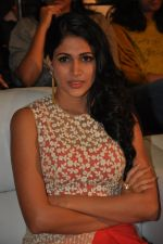 Lavanya Tripathi at Bhale Bhale Magadivoy Movie Audio (44)_55d07c94d2e7a.jpg