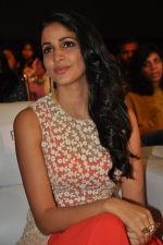 Lavanya Tripathi at Bhale Bhale Magadivoy Movie Audio (54)_55d07c9fcf99b.jpg