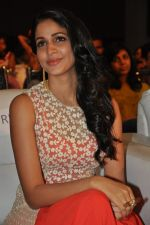 Lavanya Tripathi at Bhale Bhale Magadivoy Movie Audio (55)_55d07ca0e6a60.jpg